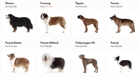 VW_dogs