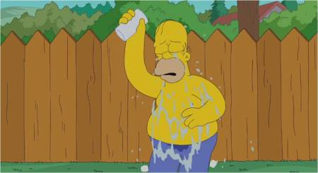 HomerSimpson_ALSIceBucket