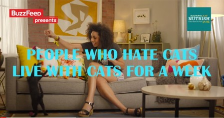BuzzFeed_RachaelRayNUTRISH_People Who Hate Cats
