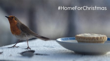 Waitrose_#HomeForChristmas_robin